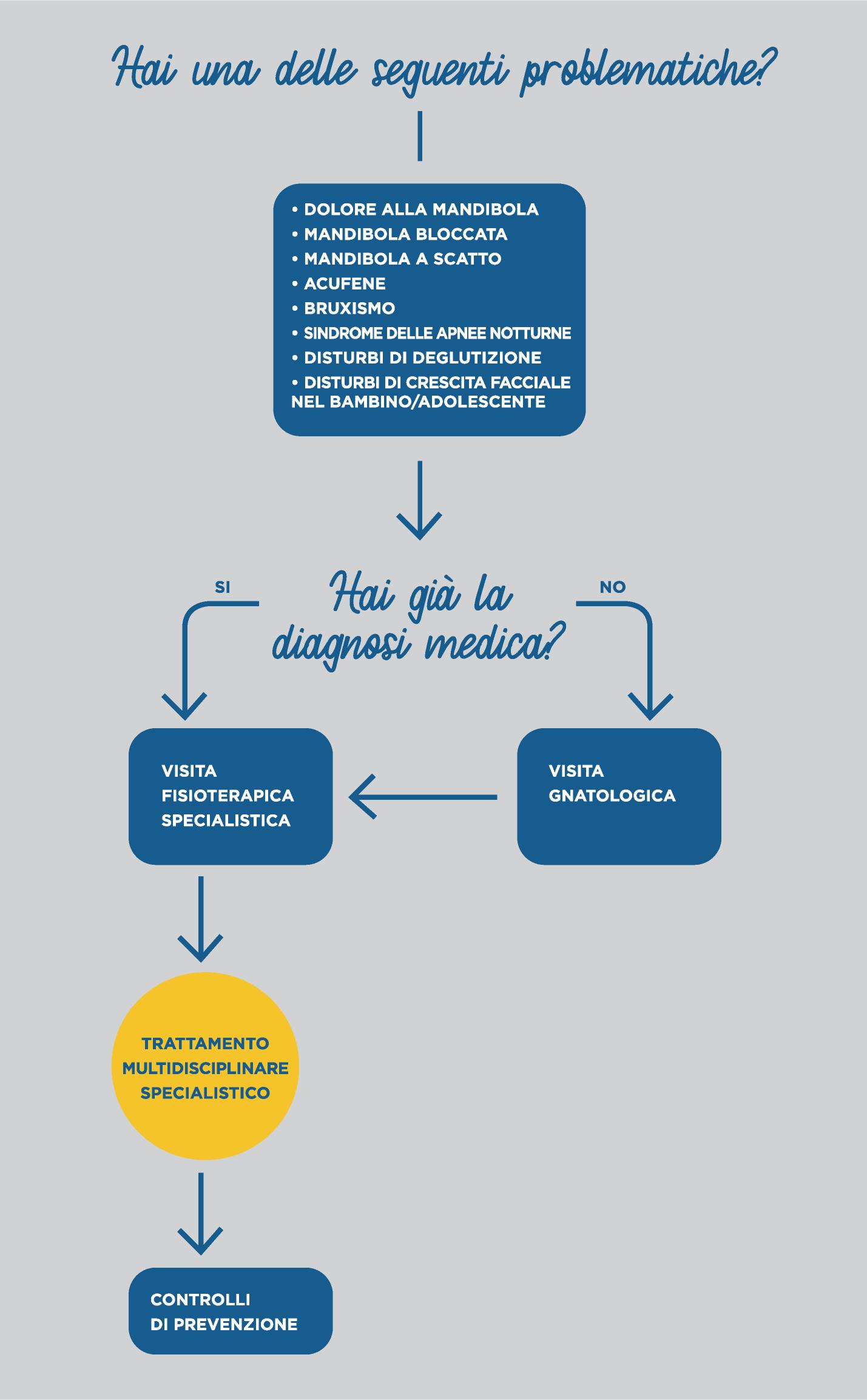 diagramma fisiooterapia mandibola e sistema masticatorio | Centro Fisioterapico Specialistico Target Saronno